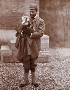 Giorgiov