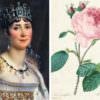 Malmaison e le sue rose, il regno magico di Joséphine